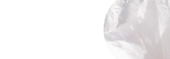 Szkło Colorimo 9003 Extra Biały