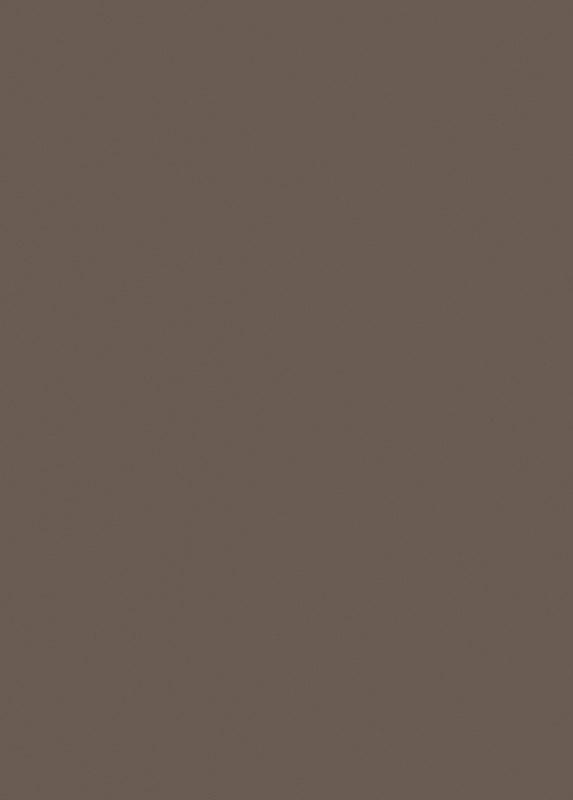 Egger U748 ST9 płyta meblowa w kolorze brąz trufla